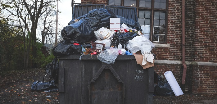 Umweltschutz Photo by NeONBRAND on Unsplash